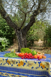 Vegetables and fruit in French garden