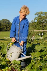 Farm Boy with watering can in vegetable garden